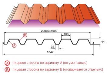 pl-N4-01